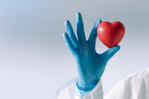 Heart in the hands of a doctor
