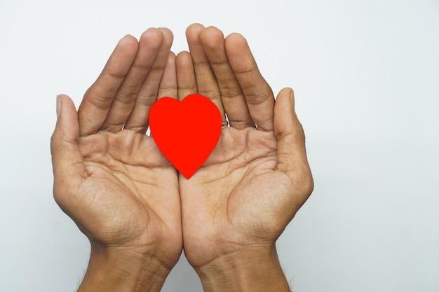 白い背景の上の心の手に思いやりのある心の概念
