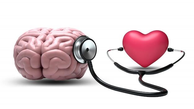 Сердце слушает мозг со стетоскопом на белом фоне