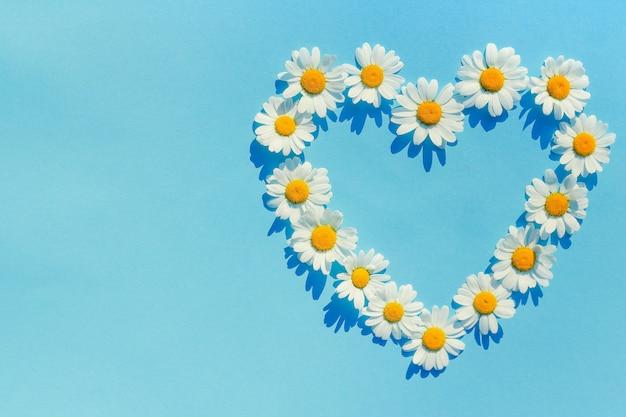ヒナギクの中心。青の背景にハート形のデイジーの花。夏と夏の気分への愛の概念