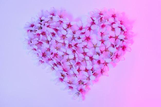 분홍색으로 물들인 하얀 아몬드 꽃의 심장