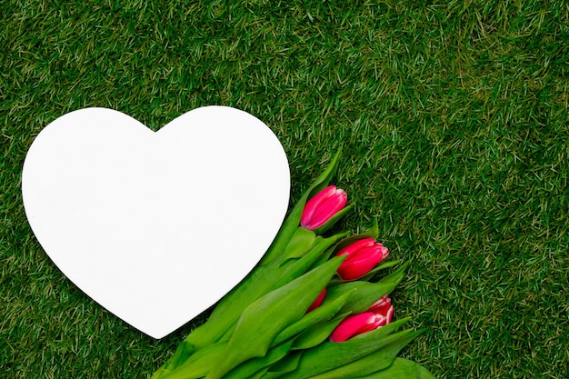 Heart shape cardboard and tulips on green grass