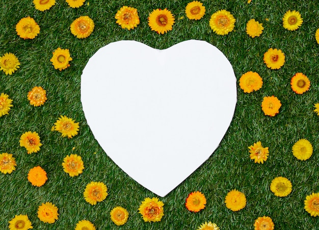 Heart shape and dandelions on green grass.