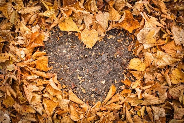 Форма сердца из опавших осенних листьев.