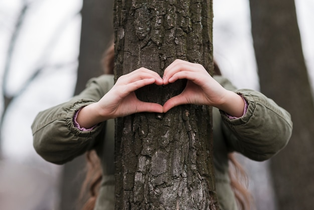 Heart shape made from hands on a tree