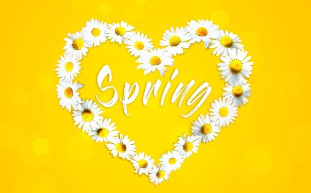 白いカモミールデイジーの花から作られたハートの形。代替医療。