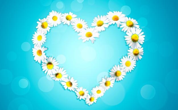 흰색 카모마일 데이지 꽃에서 만든 심장 모양입니다. 대체 약품.