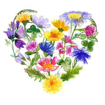 Heart shaped composition with wildflowers on white