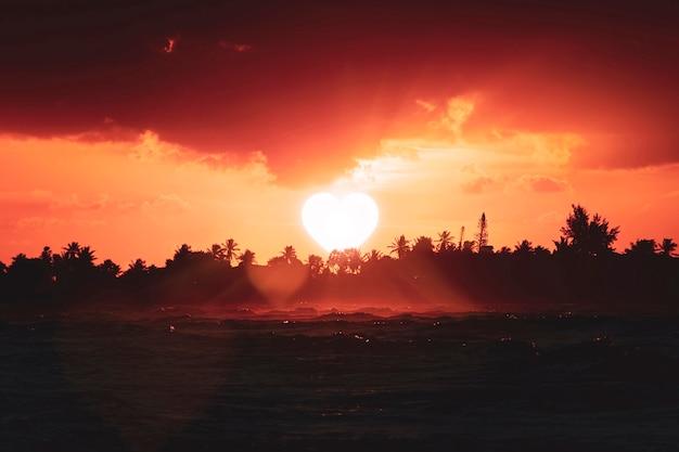Солнце в форме сердца садится за деревья на горизонте. концепция былой любви, прощай. идея развода, разлуки и разрыва отношений. символ любви. мрачная, печальная атмосфера.