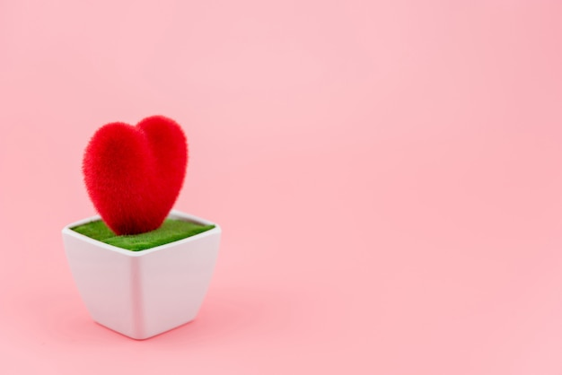 Heart shaped on white flowerpot