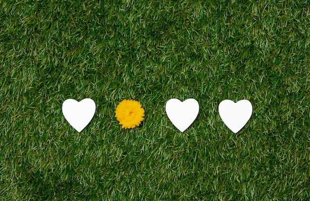 Heart shapes and yellow dandelion on green grass.