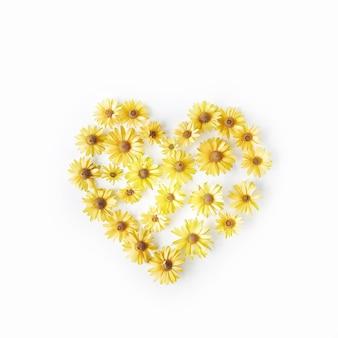 Heart symbol made of bright yellow daisy on white