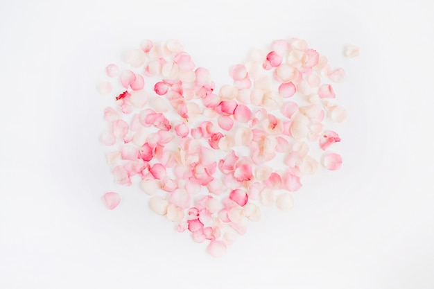 핑크 장미 꽃잎의 날 만든 심장 기호