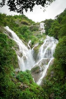 Heart waterfall in green forest