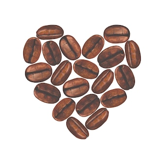 Heart with watercolor hand painted coffee beans isolated on white surface