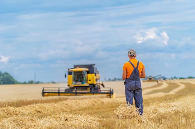 小麦畑のヘビーテクニクス。黄色のコンバインハーベスターは乾燥小麦です。農民の観察プロセス。