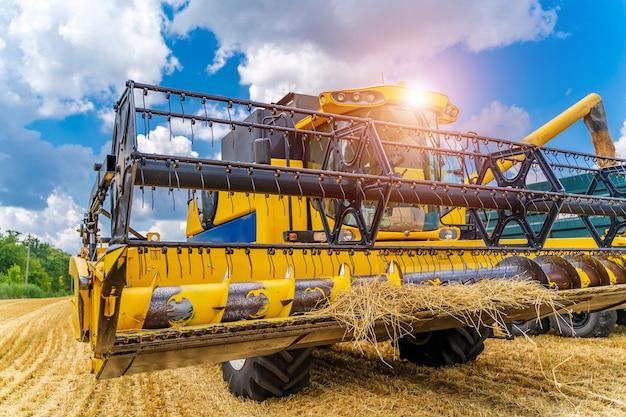小麦畑のヘビーテクニクス。黄色のコンバインハーベスターは乾燥小麦です。観察プロセス。正面図。