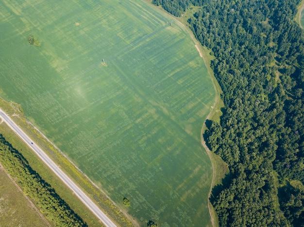 ヘリコプターのドローンショット。道路、緑の草と緑の森の航空写真