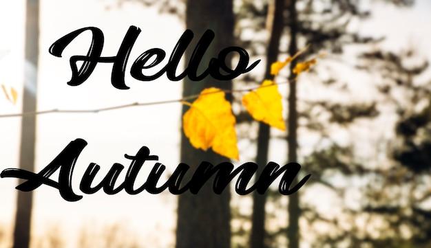 こんにちは秋のテキストを背景に