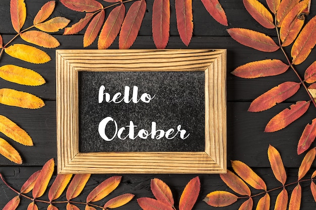 Hello october lettering frame. concept of the fall season