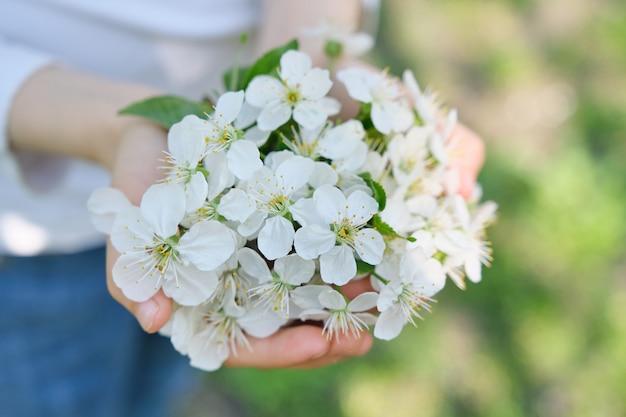 こんにちは、4月。女の子の手に咲く白い桜