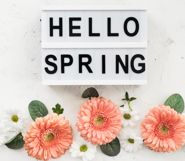 Hello spring sign with gerbera flowers and daisies