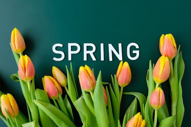 こんにちは、濃い緑色の背景に新鮮な黄赤色のチューリップで春。国際女性の日、母の日、イースターの概念