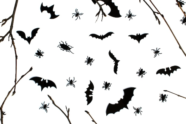 Helloween card with bats spiders, cockroaches and a branch on a white