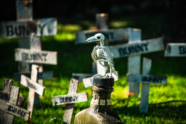 Helloween house decor. halloween cemetery with raven skeleton. banner design with copy space.