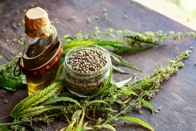 Hemp oil bottle, cannabis plant and seeds in jar on wooden table. hemp products concept