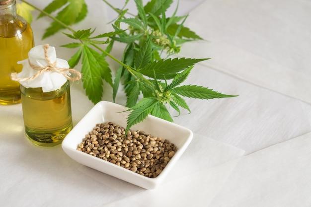 대마 제품 개념입니다. 대마초 종자 기름과 흰색 배경에 녹색 식물