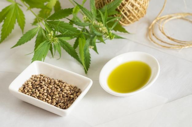 대마 제품 개념입니다. 흰색 배경에 대마초 종자 기름, 타래 및 녹색 식물