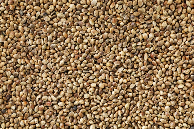 Hemp seeds. close up. space for text.