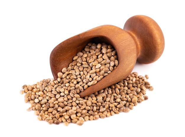 白い背景に分離された大麻の種子。木製のスクープで大麻、麻またはマリファナの乾燥種子。