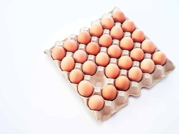 Hen egg isolated