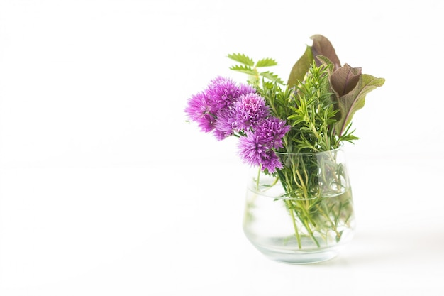 Herbal food concept chive blossoms and aromatic herbals in glass jar isolated on white background