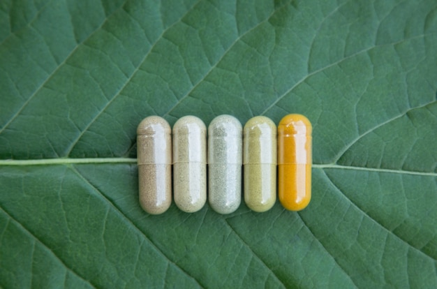 Herbal medicine in capsules from herb in natural handmade supplement