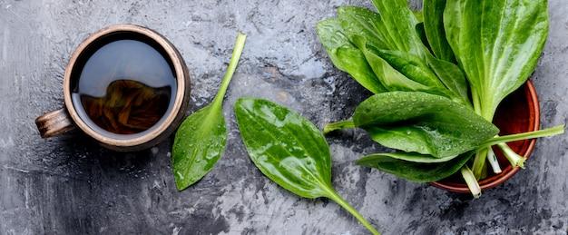 Травяной чай с подорожником
