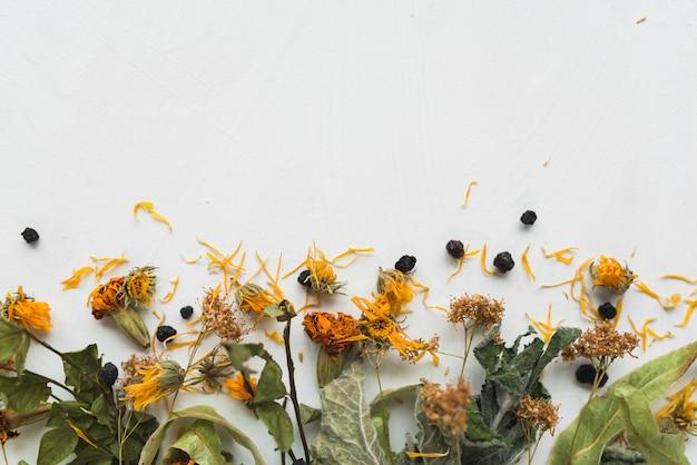 白い背景の上のハーブティーの成分。乾燥したミント、ブルーベリー、シナノキの花、マリーゴールド、キンセンカ。散りばめられたハーブティーの平干しスタイル。