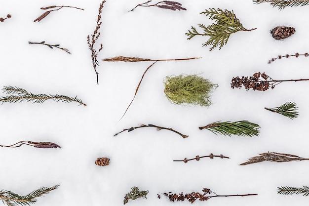 ハーブと異なる植物の背景