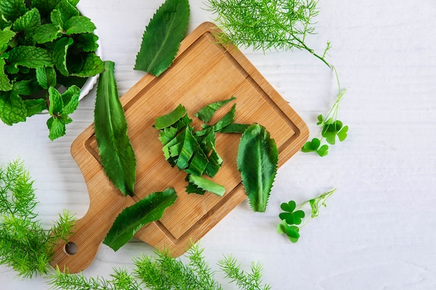 Herbs culantro and mint herbs on a wooden cutting board
