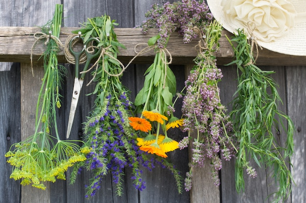 Herbs hang and dry.
