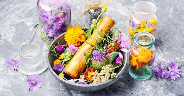 Herbs medicine flowers