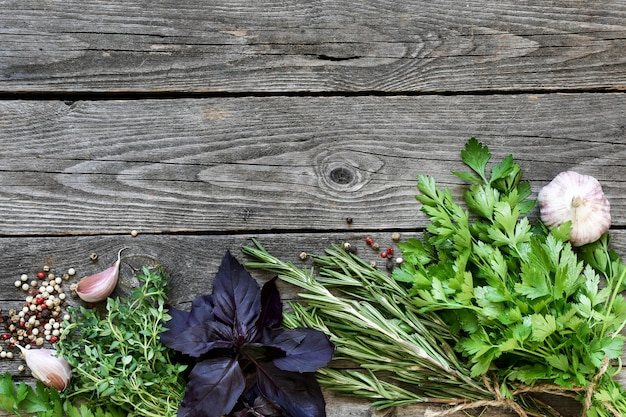 Herbs and spices on an old wooden gray background, space for text