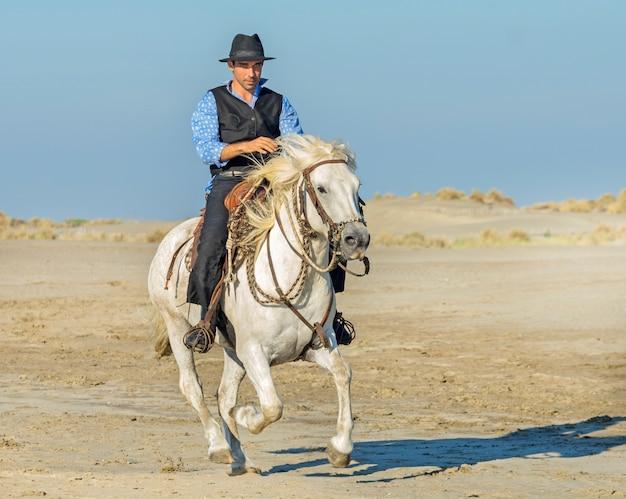 Herdsman on the beach