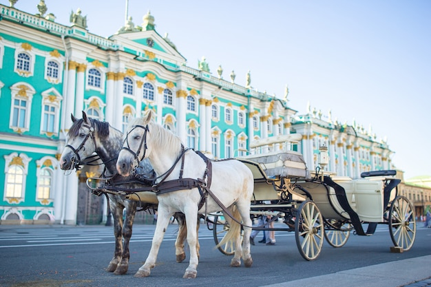 Эрмитаж на дворцовой площади, санкт-петербург, россия