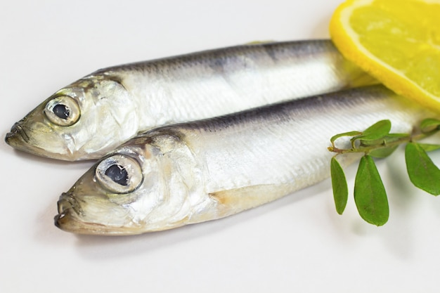 Herring, lemon and green branch on parchment