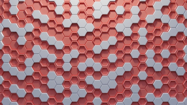 Hexagon abstract on living coral