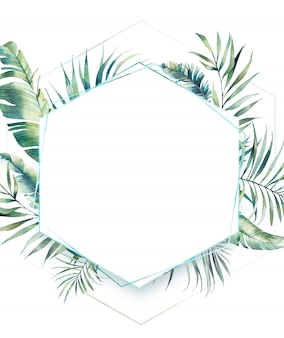 Hexagon tropical plants frame. hand drawn summer card design with exotic branches, banana leaves, palm tree. greeting or logo template.
