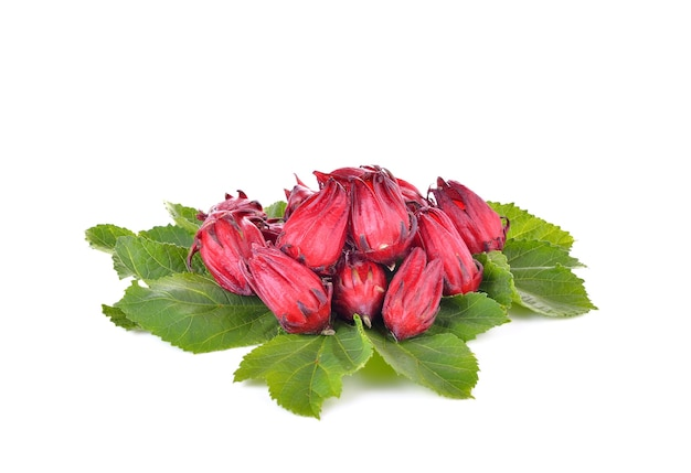 Hibiscus sabdariffa или плоды розели